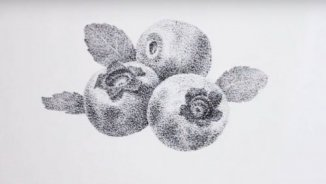 Pointillism video drawing lesson