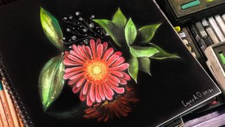 "Video lesson ""Red flower on a black paper. Pastel drawing"""